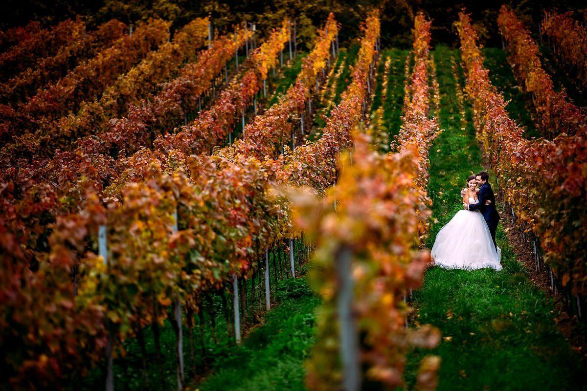 Hochzeitsfotograf Bad Durkheim Hochzeit Altes Weingut Maxbrunnen Hochzeitsfotograf Weingut Hochzeit