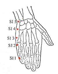 Small Intestine Meridian | Acupressure, Acupuncture ...