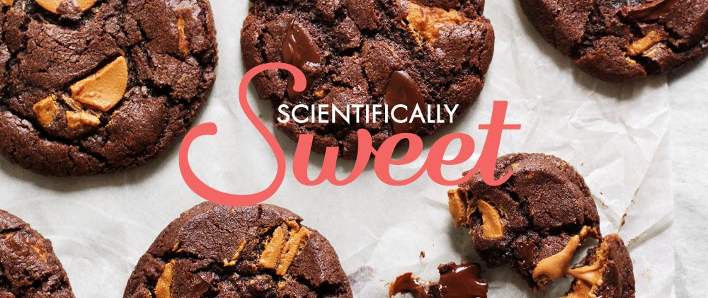 Scientifically Sweet 4 Ingredient Chocolate Mousse Cake Gluten