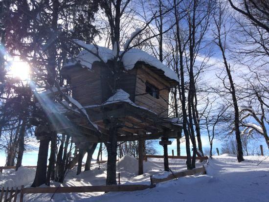 Jura Les Loges Du Coinchet La Pesse Glamping In De Winter Projet