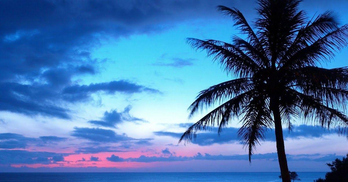 خلفيات شاشة 2020 اجمل خلفيات للشاشه بجودة عالية Hd للكمبيوتر واللاب توب خلفيات جميلة جدا احلى خلفيات للشاشات لسطح Sunset Images Nature Photography Blue Sunset