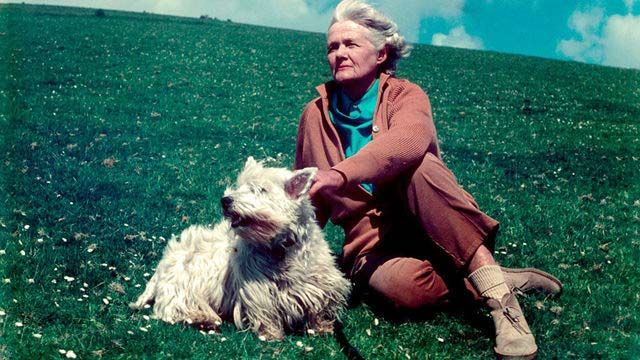 Words of Wisdom& Quotes by Daphne du Maurier in 2019