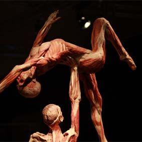 Body Worlds-Gunther von Hagens