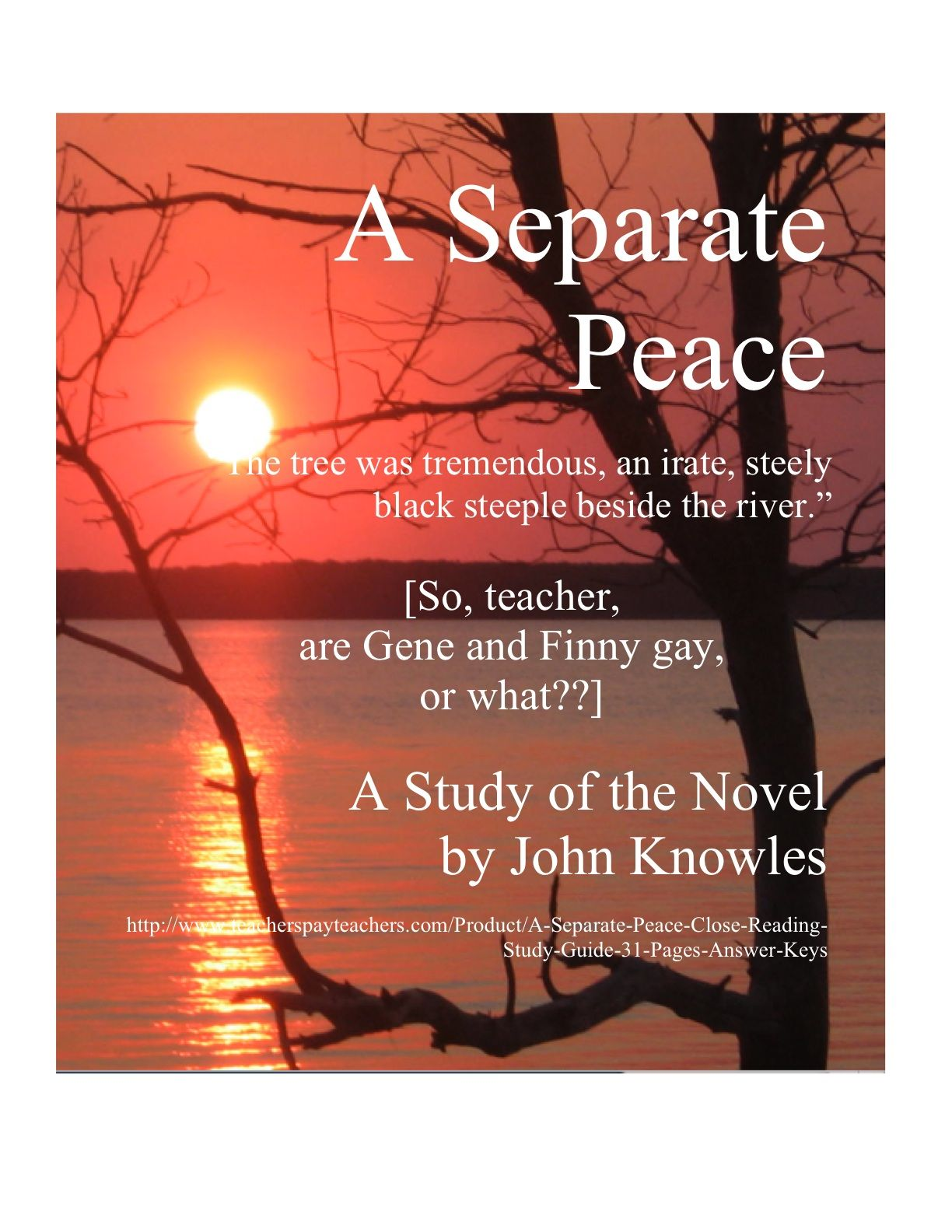 how many pages are in a separate peace