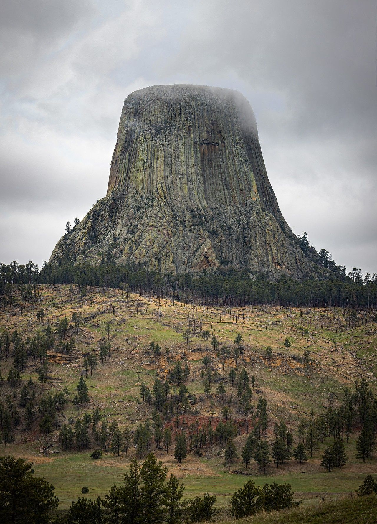 Pin by Edgar Guerrero on amazing pics Devils tower