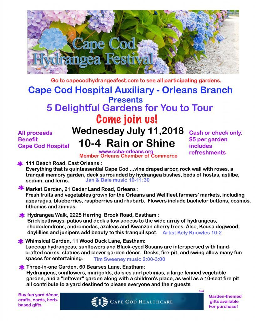 Hydrangea Garden Tours To Benefit Cape Cod Hospital Auxiliary