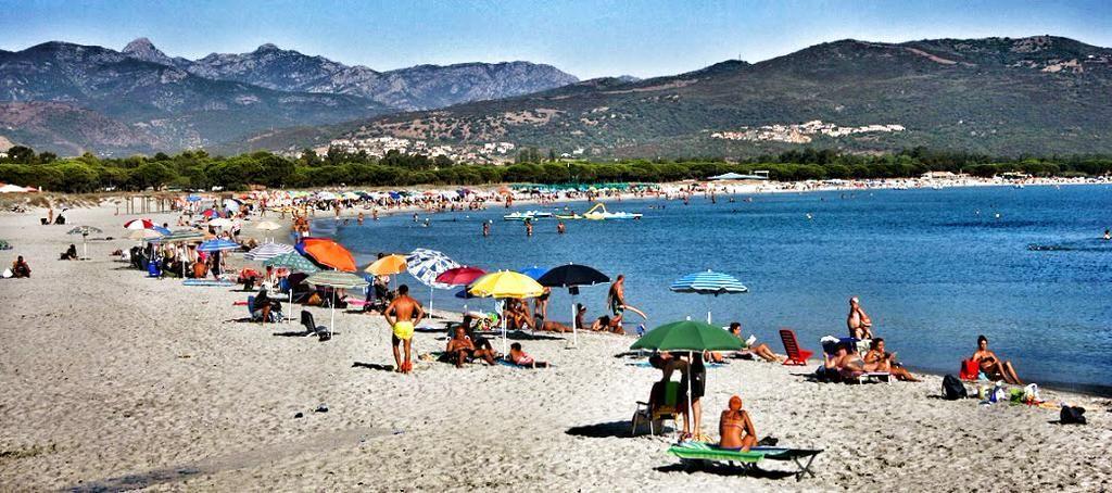 #Spiaggia Sant'Anna di #Budoni in #Agosto vista dalla #pineta. #Estate #Mare #Sole  #sardignagalana