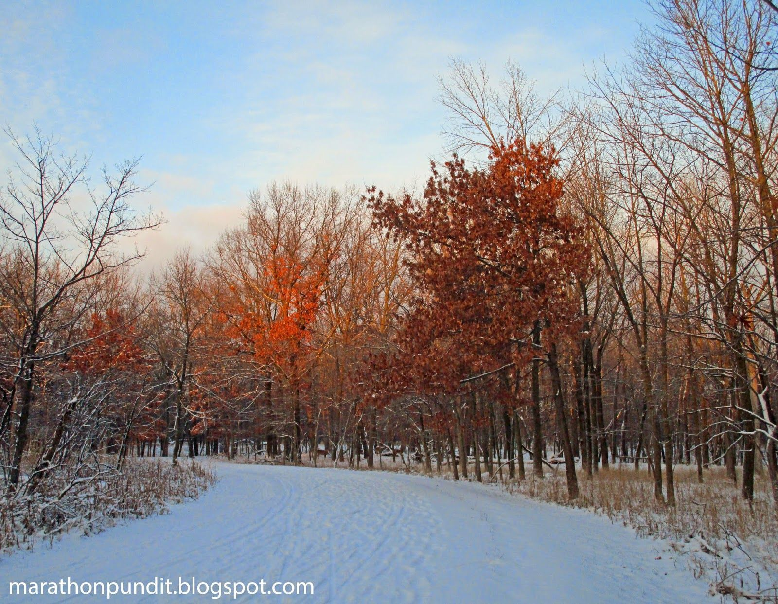 (Photos) First snow at Morton Grove's Miami Woods #mortongrove The North Branch running and cycling path after the first snow of the winter of 2015 at Morton Grove's Miami Woods. #mortongrove