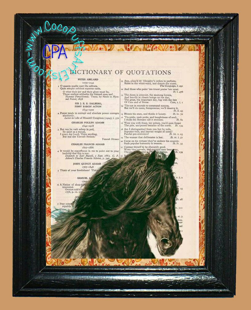 Black Beauty - - Vintage Dictionary Book Page Art-Upcycled Page Art,Wall Art,Collage Art, black horse - Horse print by CocoPuffsArt on Etsy