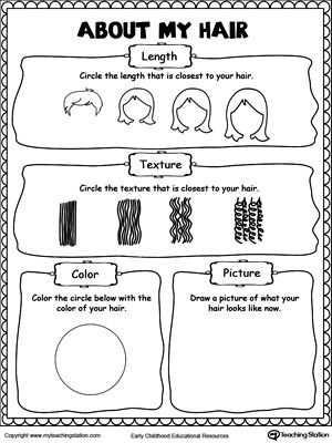 About My Hair | Social Studies Worksheets | Worksheets, Preschool ...