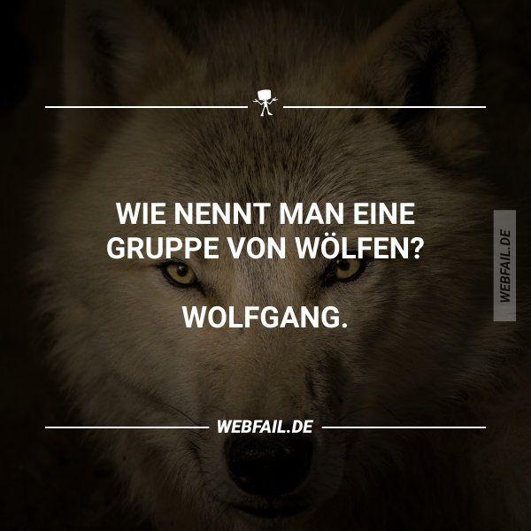 f4a9dab7ae10 Wolfgang Medick (wolfgangmedick) on Pinterest