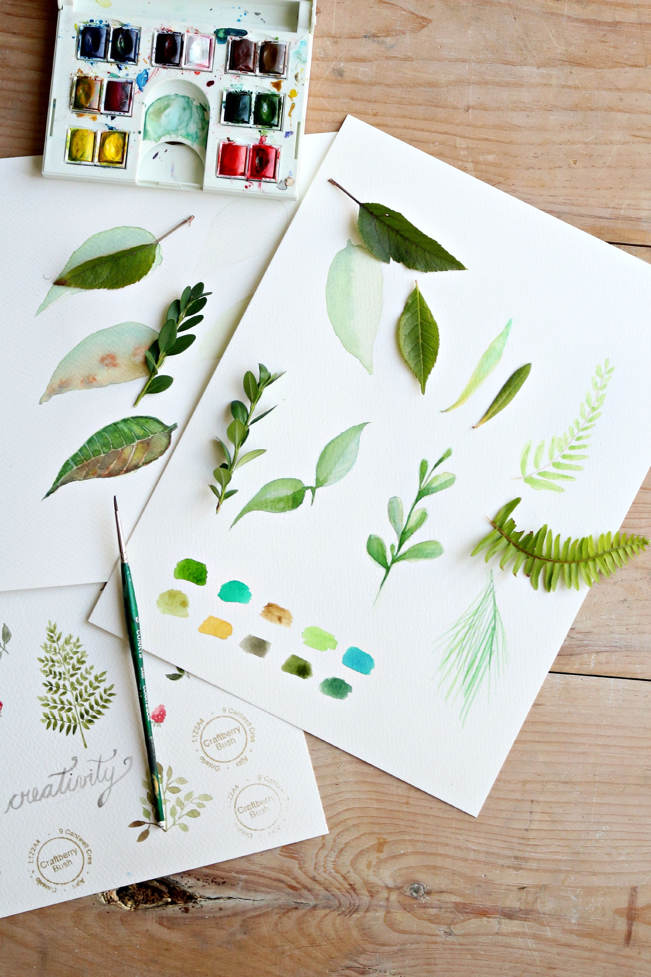 How To Paint A Basic Leaf With Watercolors Watercolour Tutorials