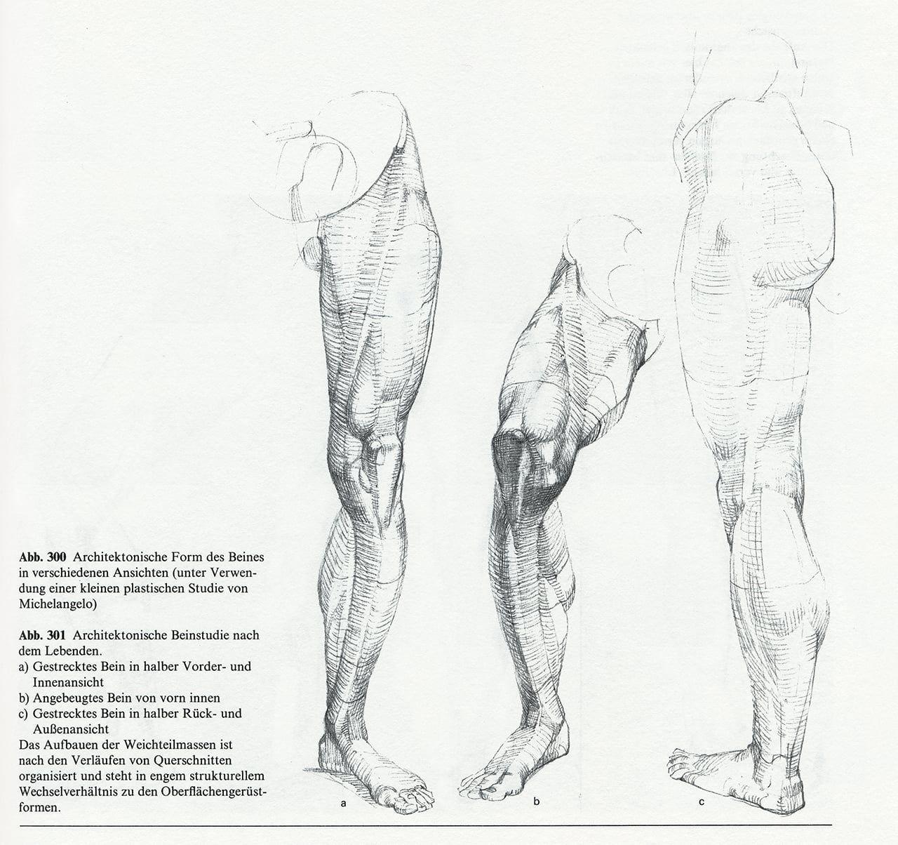 Anatomy - Bammes - Der nackte Mensch   Bammes - Der nackte Mensch ...