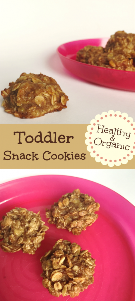 Healthy snack cookies recipes