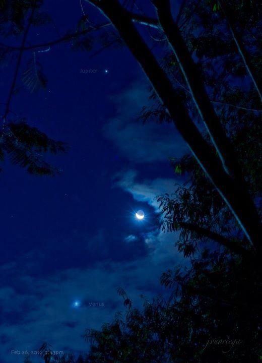 Crescent Moon Venus Jupiter Visible Planets Stargazing Nature