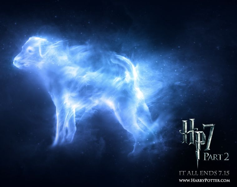 Expecto Patronum Ron Weasley Jack Russell Terrier Harry Potter Patronus Harry Potter Witch Otter Patronus