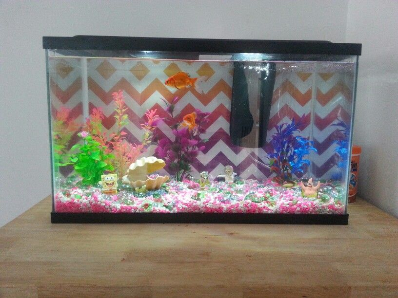Use A Leftover Decorative Gift Bag As The Background For Your Fish Tanks A Large Bag Will Fit A Ten Gallon Tank Diy Fish Tank Fish Tank Decorations Fish Tank