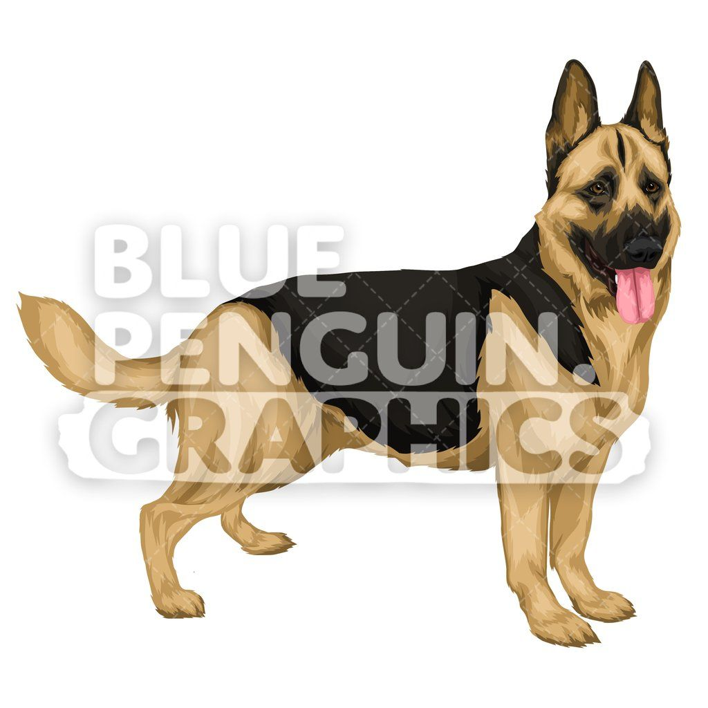 German Shepherd version 7 Vector Cartoon Clipart Illustration in