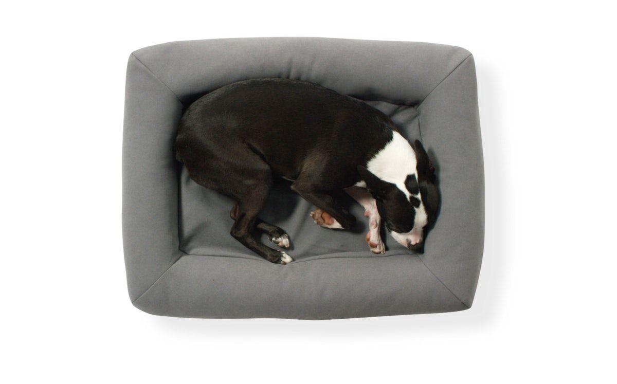 casper dog beds pet furniture products pinterest dog beds