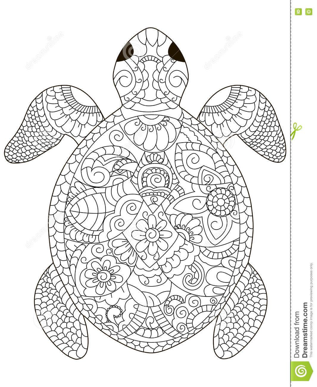 Green Turtle Coloring Pages Portraits