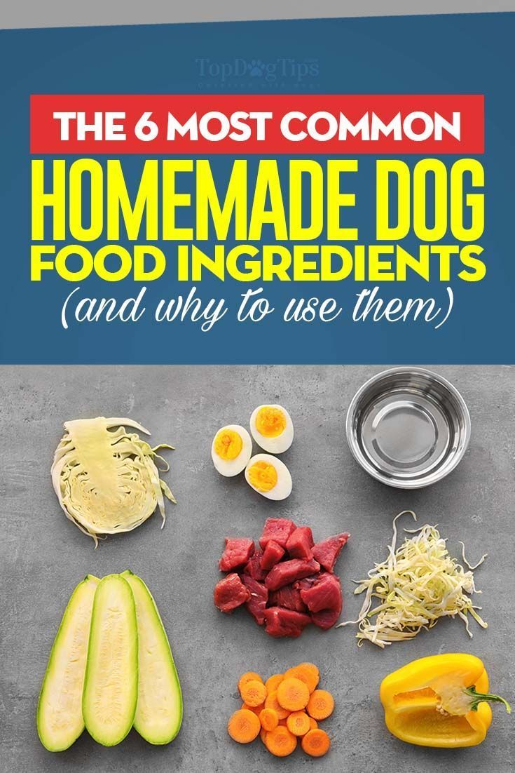 6 common homemade dog food ingredients with images dog