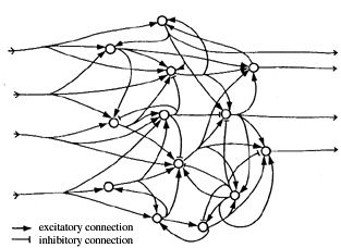Quantum Approaches To Consciousness Encyclopedia Of Philosophy Philosophy Life Philosophy