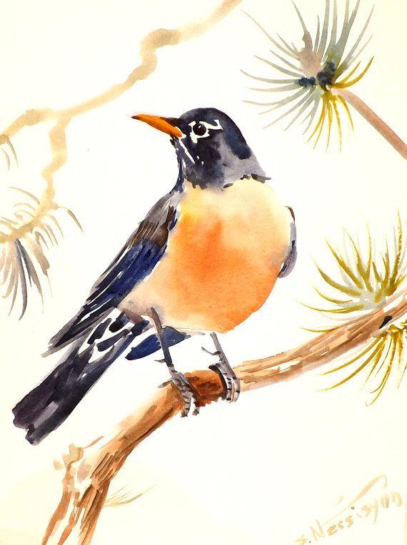American Robin Original Watercolor Painting 12 X 9 In