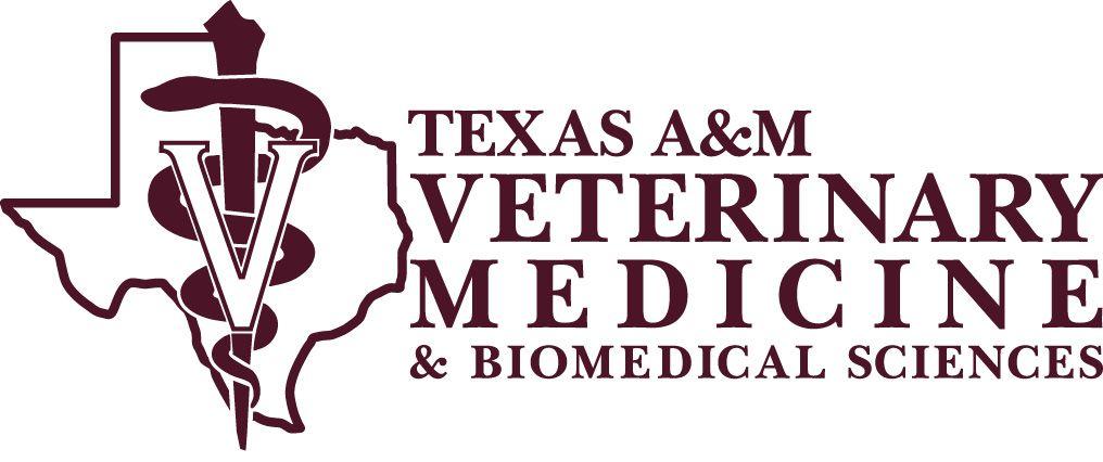 Texas A College Of Veterinary Medicine