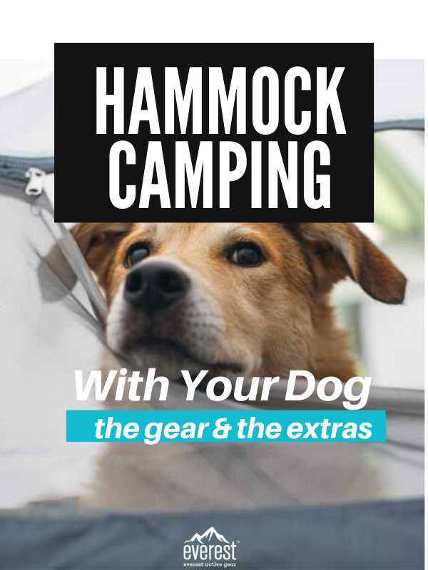 Gearing Up For Hammock Camping With Your Dog in Our ...