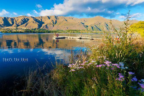 Lake Wanaka - 2303-web.jpg