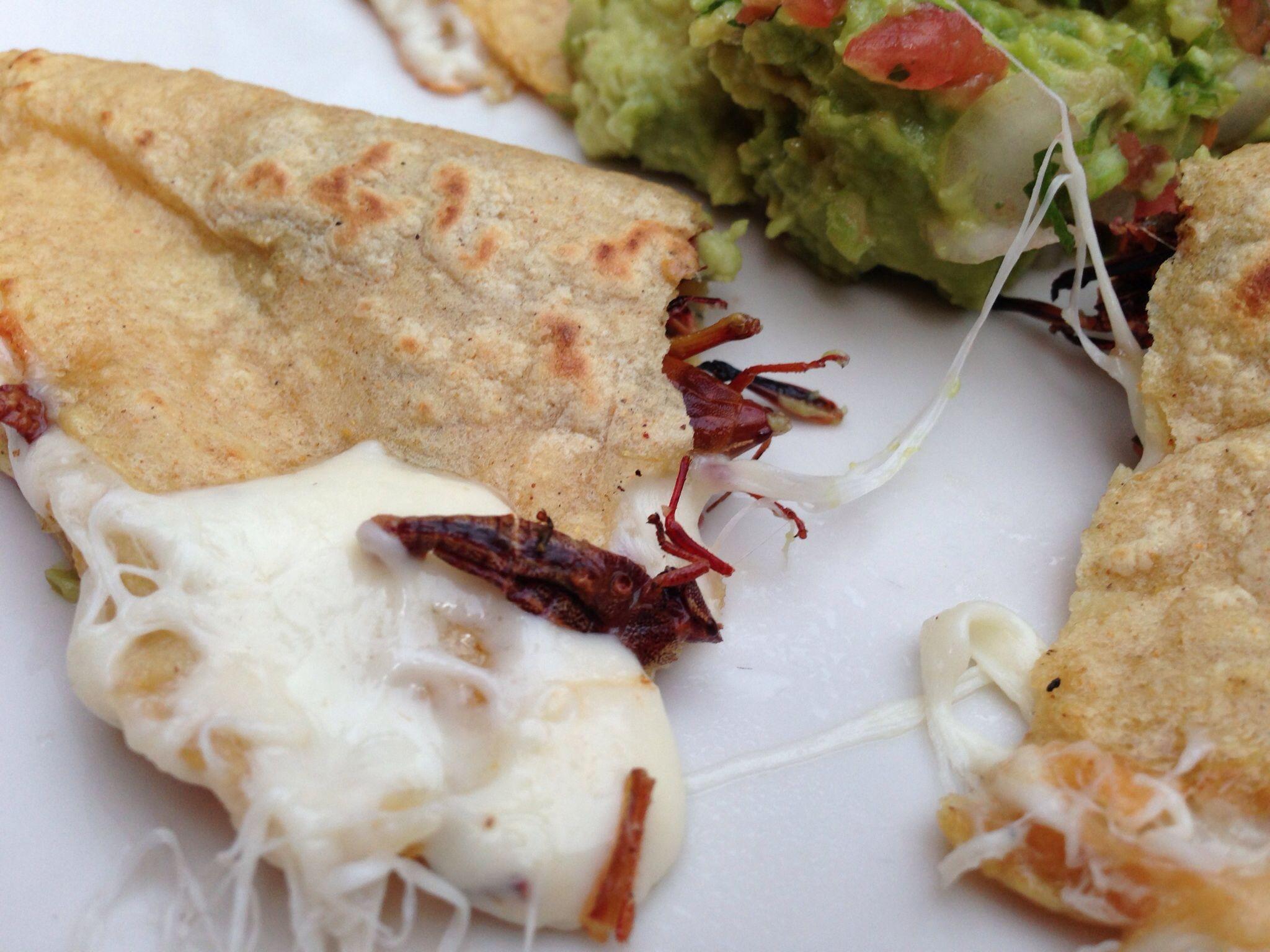 Blue apron quesadilla - Quesadillas Con Chapulines