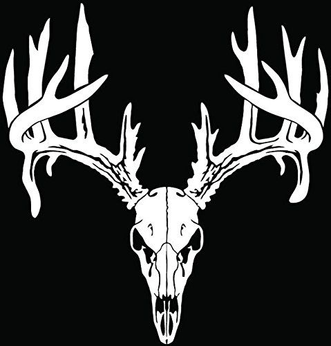 Deer Buck Antlers Skull Hunting Car Truck Window Bumper Vinyl - Rear window hunting decals for trucksduck hunting rear window graphics best wind wallpaper hd