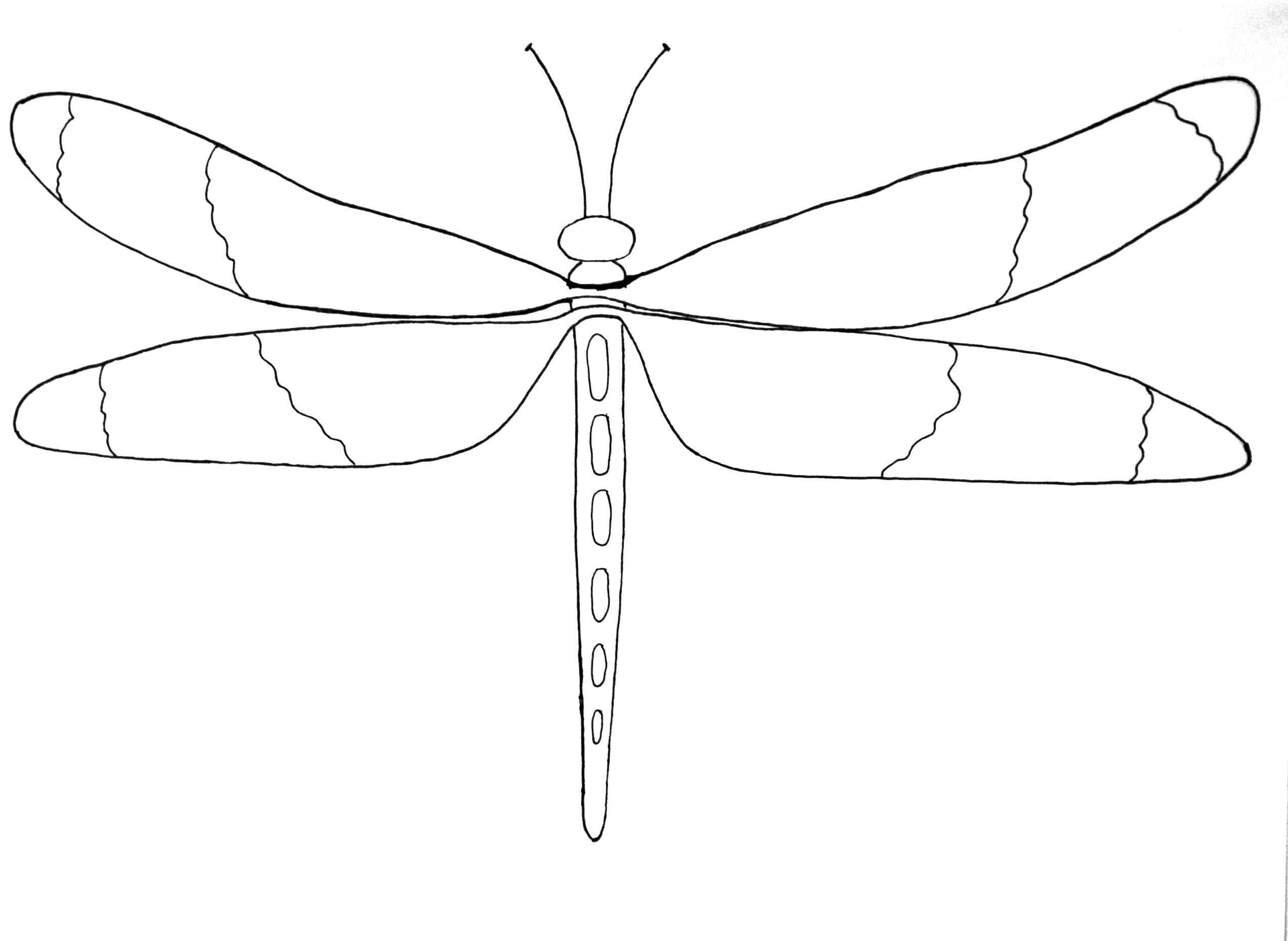 Bug Patterns | Bordado mejicano, Libélulas y Artes visuales