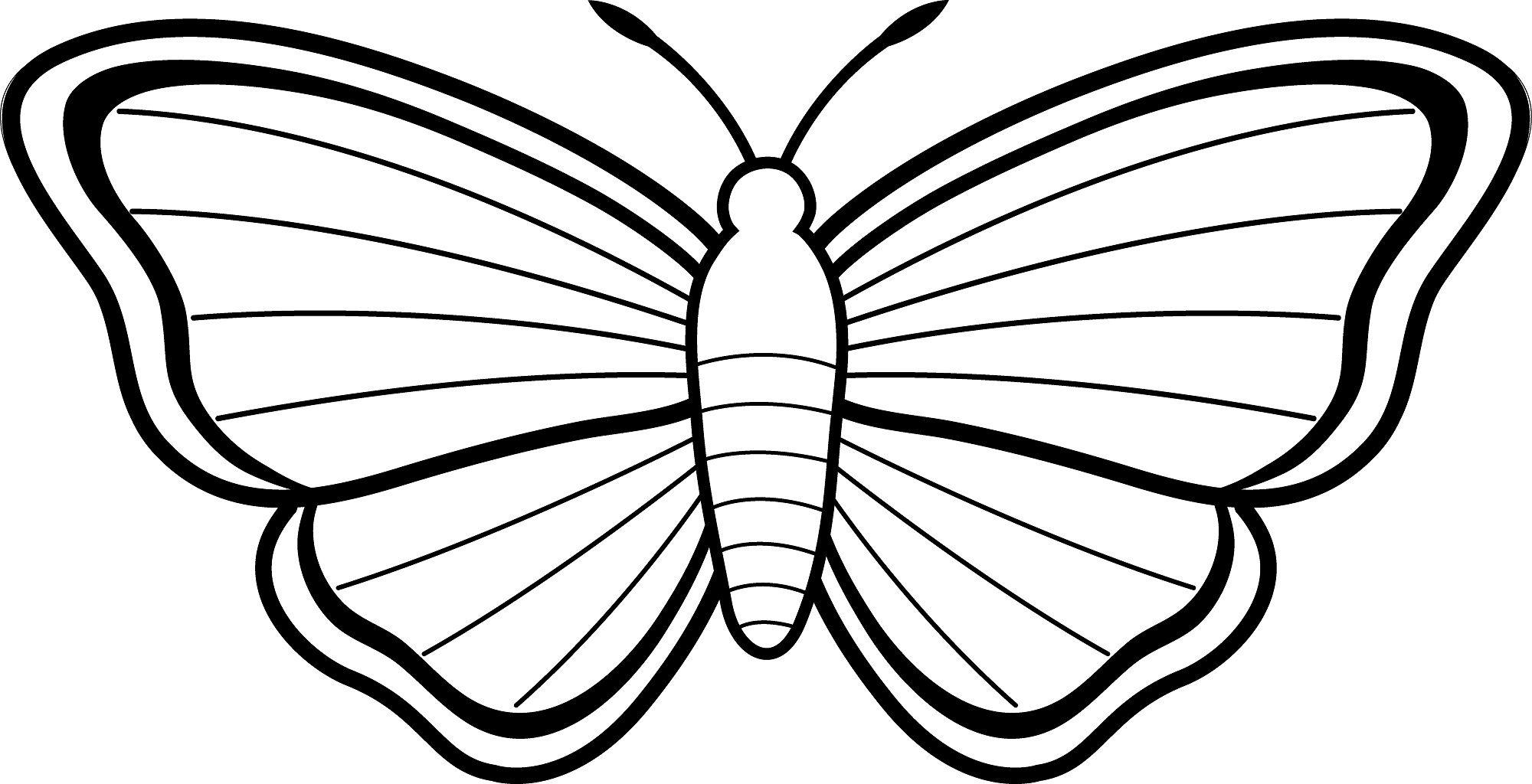 mariposas para colorear - Buscar con Google | Pintar | Pinterest ...