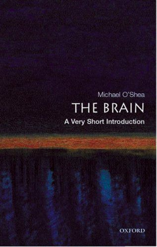 The Brain A Very Short Introduction Very Short Introductions Wont Available Any Time So We Wil Ask Do You In 2020 Book Annotation Science Books Oxford University Press