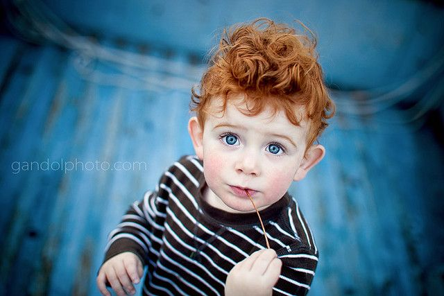 Little Boy Red And Blue Red Hair Boy Red Hair Blue Eyes