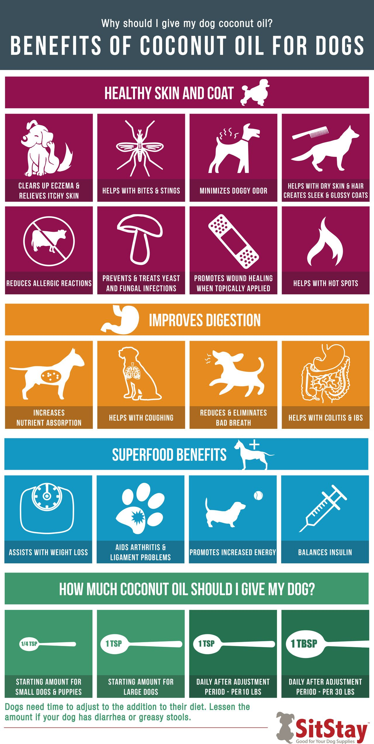 the benefits of coconut oil for dogs free printable pinterest