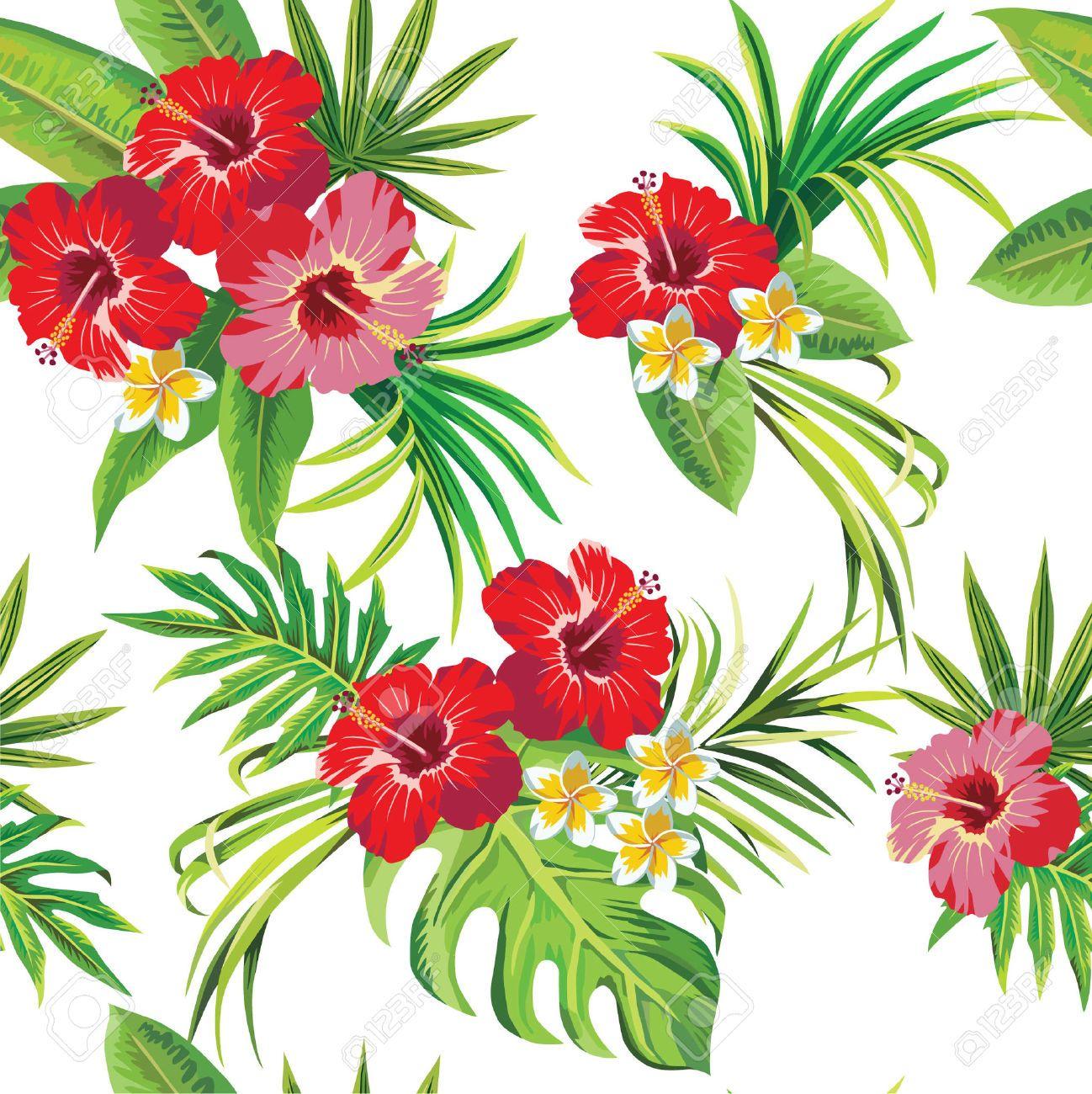 Hibiscus Et Feuilles De Palmier Tropical Motif Floral Clip Art