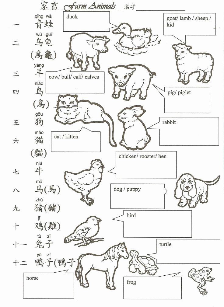 Worksheet for Kindergarten Chinese in 2020 Chinese