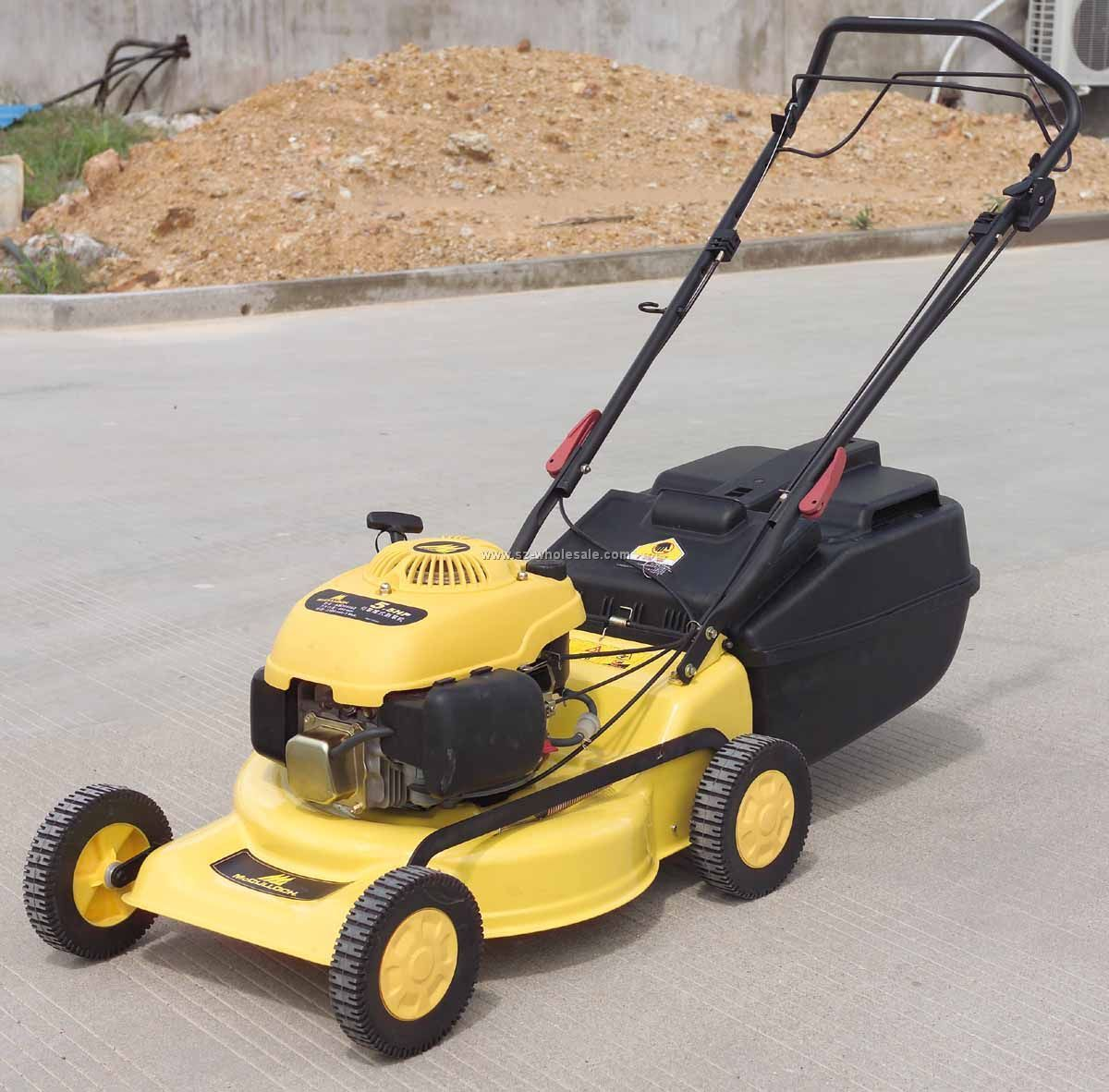 There Are Different Types Of Lawn Mowers Types Of Lawn Lawn Mower Mower