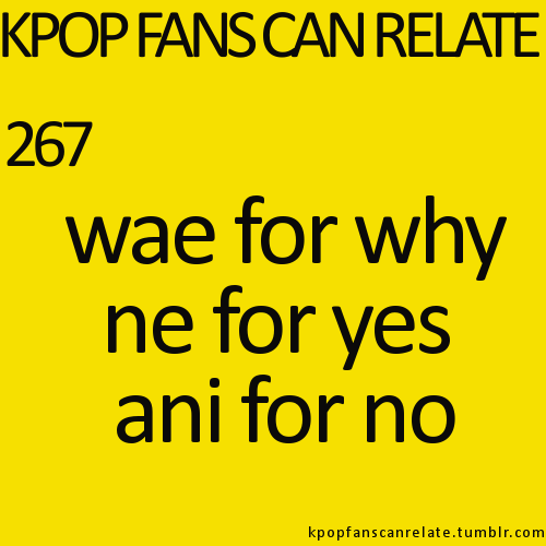 Making Kpop Fans Laugh Since 2011 Korean Words Funny Kpop Memes Kpop Funny