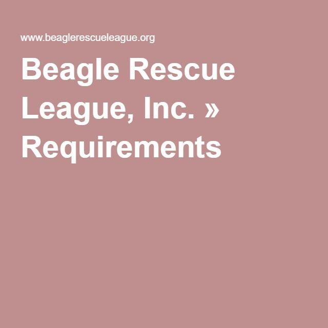 Beagle Rescue League, Inc. » Requirements