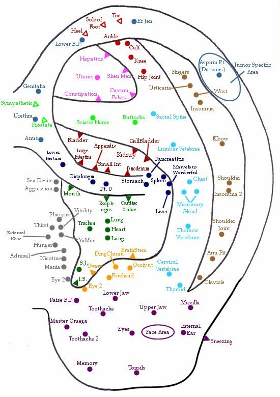 Ear Acupuncture Point Chart Take care of your self Pinterest