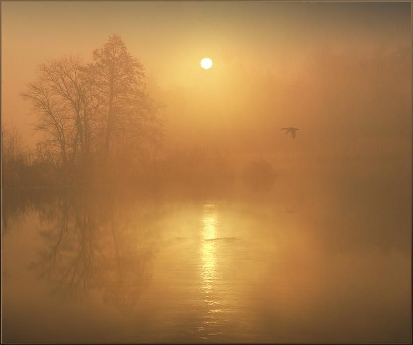 Misty morning sunrise