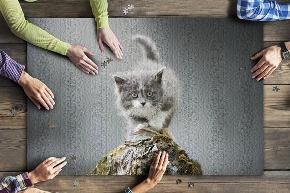 Beautiful Fluffy Kitten Posing Outdoors 9004344 (20x30 Premium 1000 Piece Jigsaw Puzzle, Made in USA