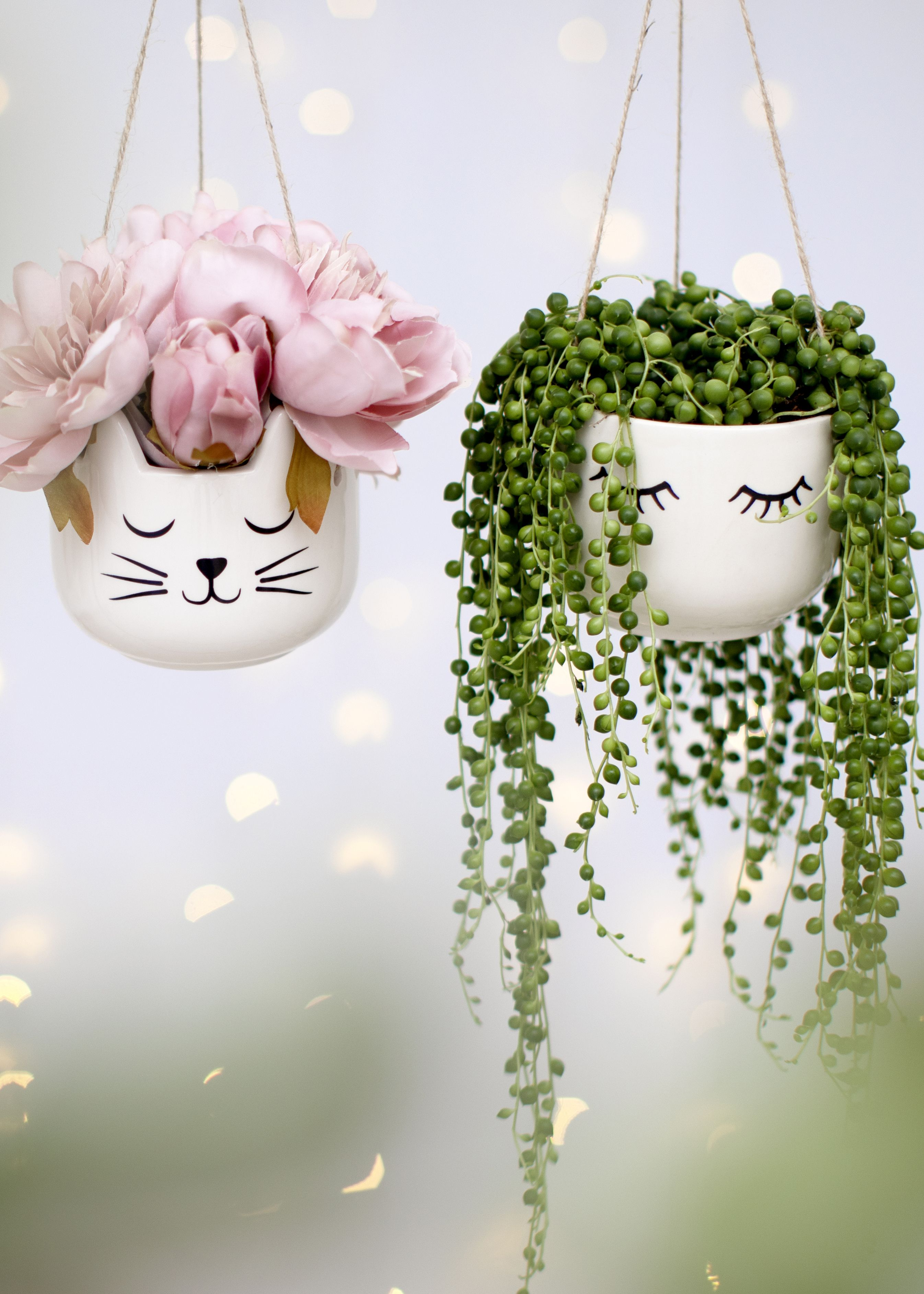 Sass Belle Eyes Shut And Cat Hanging Planters We Are On A Mission To Light Up Homes Everywhere Painted Flower Pots Decorated Flower Pots Painted Plant Pots