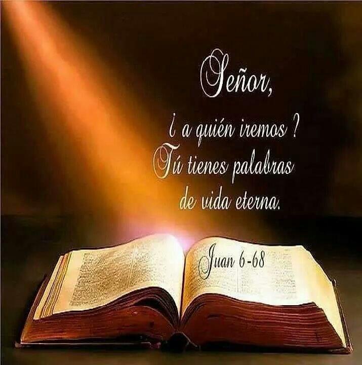 Juan 6:68