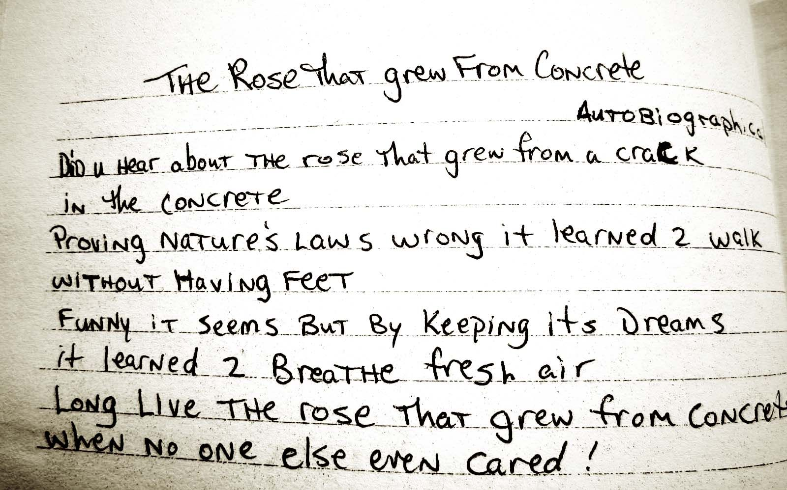 The Rose That Grew From The Concrete Poem By Tupac Bookacuppa June