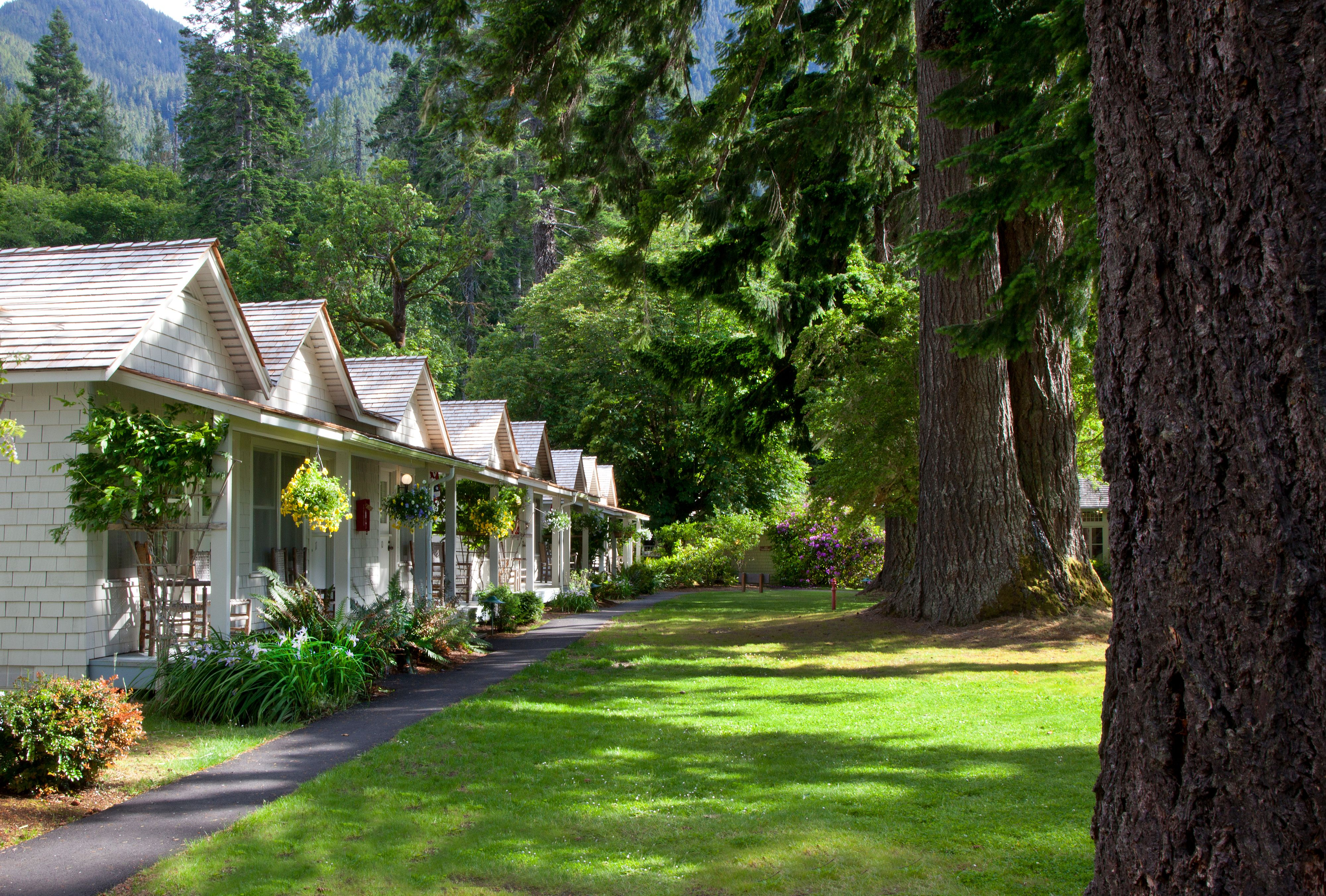 Olympic National Park Cabins At Kalaloch Lodge | Cabin :: Lodge | Pinterest  | Cabin
