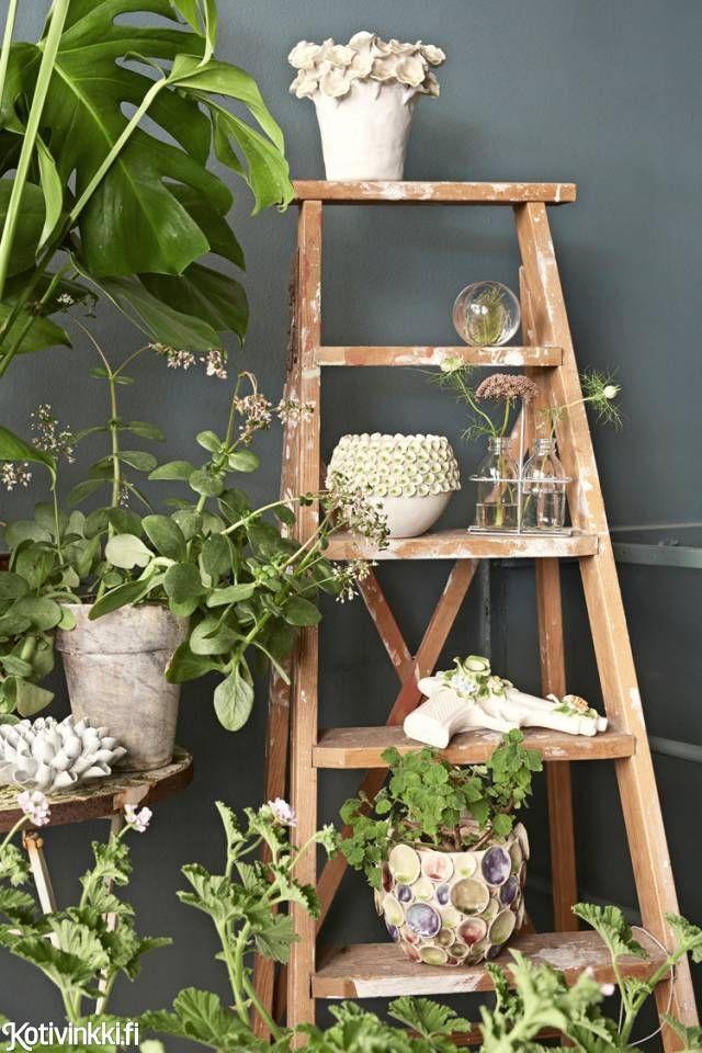 Sisusta boheemisti kasveilla | Kotivinkki